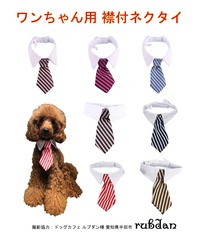 犬用襟付ネクタイ