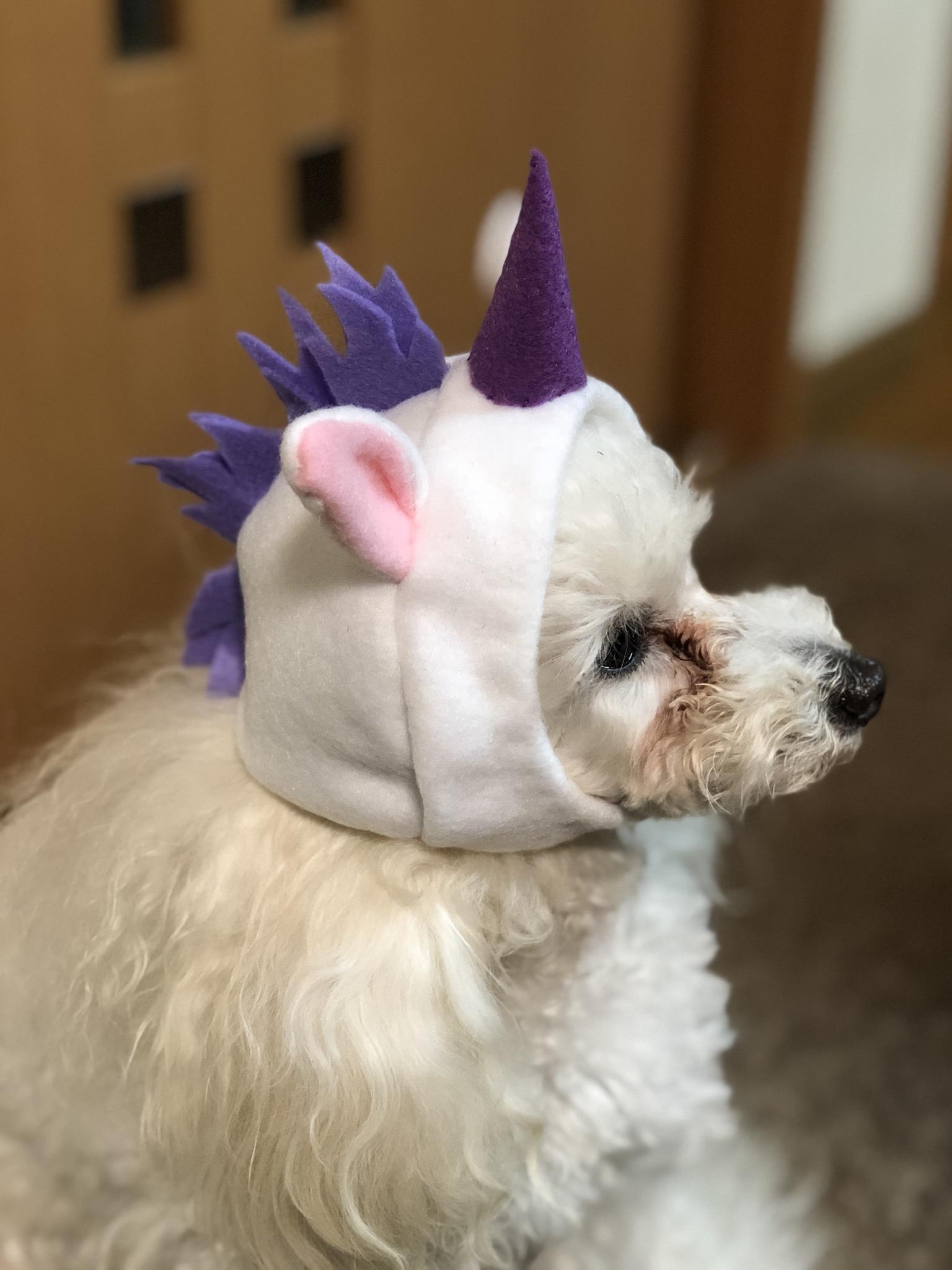 ガチャガチャ商品 犬用ユニコーンの被り物