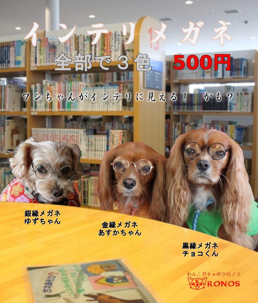 インテリメガネ(小型犬用メガネ)